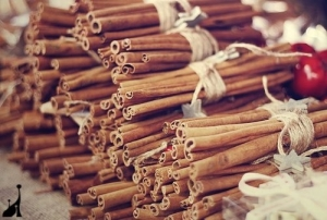 50919-Cinnamon-Sticks